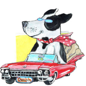 Whimsical black and white dog riding in a red cadillac napkin holder
